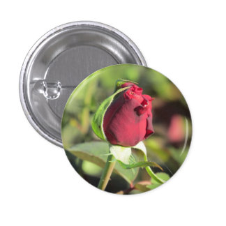 Red Rose Bud Pinback Button
