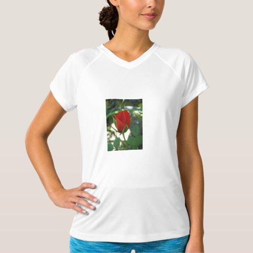 Red Rose Bud T Shirt