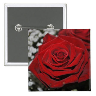 Red rose - button