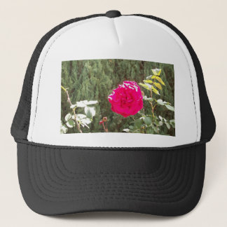 Red Rose Cap