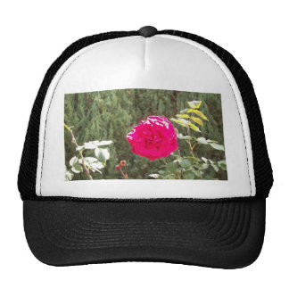 Red Rose Cap Trucker Hat