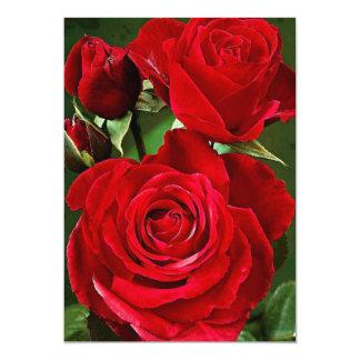 "red rose card 5"" x 7"" Basic White"