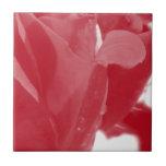 Red Rose Ceramic Tiles