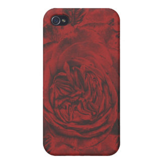 Red Rose  Covers For iPhone 4
