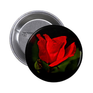 Red Rose - Dark Passion Pinback Button