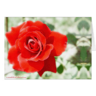 red rose defused glow card