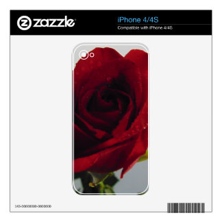 Red Rose Delight iPhone 4 Decals