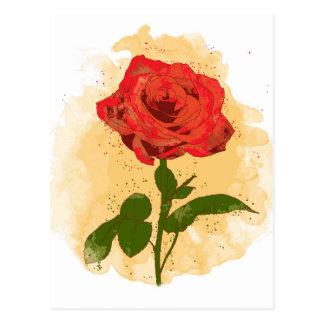 Red Rose Design Postcard