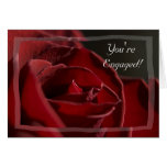 Red Rose Engagement Congratulations Card