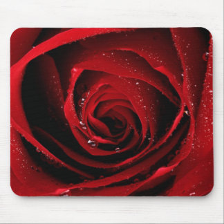 Red Rose Floral Flower Rose Petals Blossoms Dew Mouse Pad