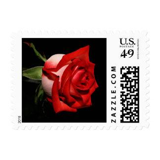 Red Rose Flower Black Floral Wedding Postage