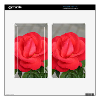 Red rose flower in bloom in garden kindle fire decals