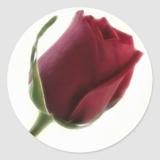 Red Rose Flower on White Stickers