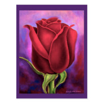 Red Rose Flower Painting - Multi Post Cards