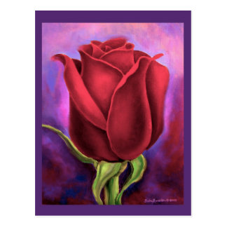 Red Rose Flower Painting - Multi Postcard
