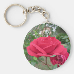 Red rose flowers with water droplets in spring keychain