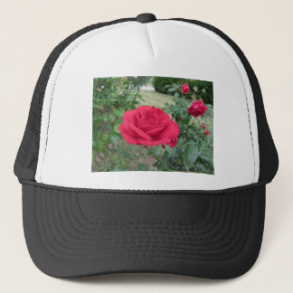 Red rose flowers with water droplets in spring trucker hat
