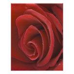 Red Rose Flyer