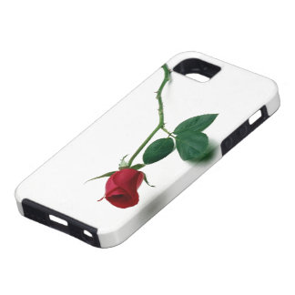 Red Rose for you iPhone SE/5/5s Case