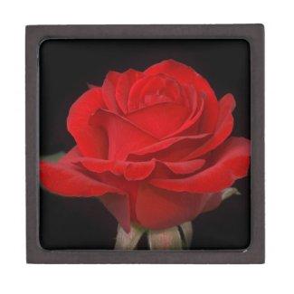 Red Rose Gift Box Premium Jewelry Box