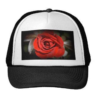 Red Rose Trucker Hats