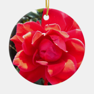 Red Rose / hot pink coral Christmas Ornaments