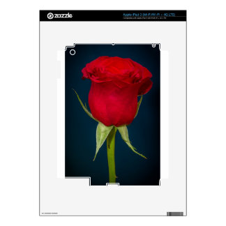 Red Rose Image Skin For iPad 3