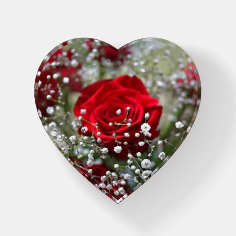Red Rose in Baby's Breath Paperweight