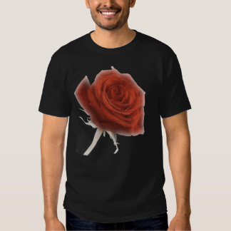 Red Rose In Soft Focus Shirt