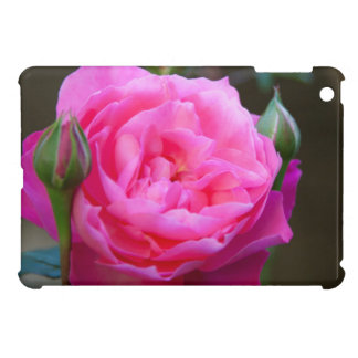 Red Rose In The Garden Of Hotel Carnavalet iPad Mini Case