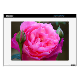 Red Rose In The Garden Of Hotel Carnavalet Decals For Laptops