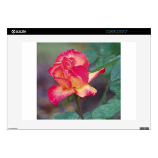 """red rose in the rain skin for 15"""" laptop"""