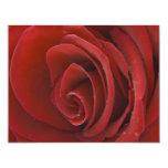 "Red Rose Invitation 4.25"" X 5.5"" Invitation Card"