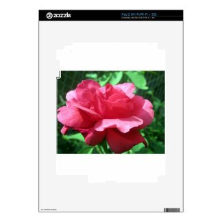 Red Rose iPad 2 Decal