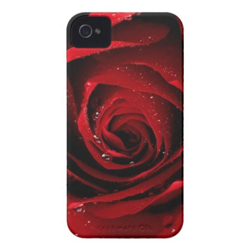 Red rose iphone 4 ID case
