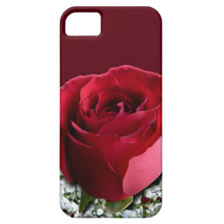 Red Rose iPhone 5 Case Roses iPhone Cases
