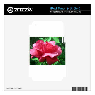 Red Rose iPod Touch 4G Decal