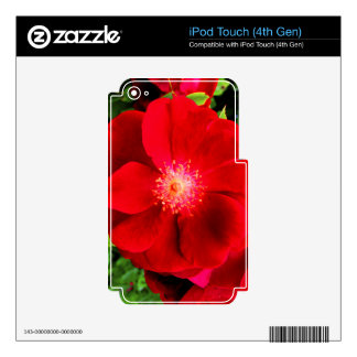 Red Rose iPod Touch 4G Skin