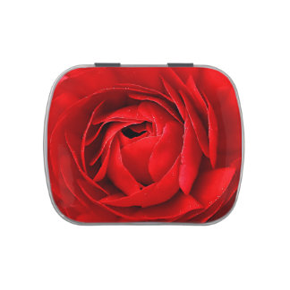 RED ROSE JELLY BELLY TIN