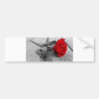 Red Rose Left On The Dock; I Still Love You Bumper Sticker