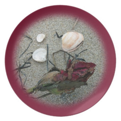 Red Rose Lost at Sea Party Plates