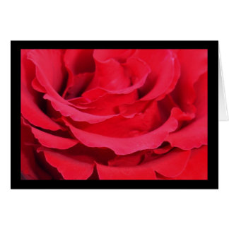 Red Rose (Love, Courage and Respect) Greeting Card