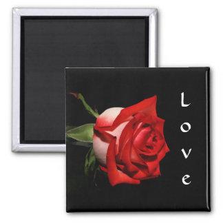 Red Rose Love Magnet