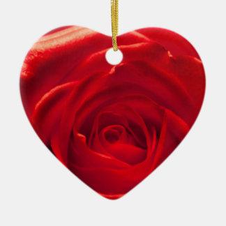 Red rose macro admission ceramic ornament