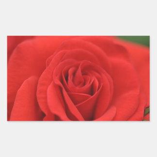 Red Rose Macro Rectangular Sticker