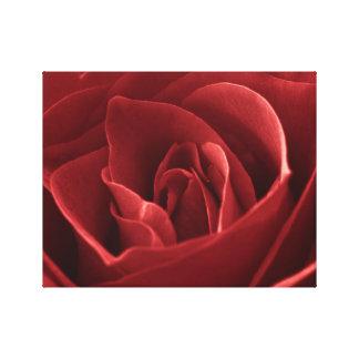 Red Rose Macro Wall Art