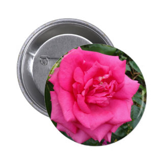 Red Rose of Love Button