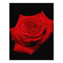 Red Rose on Black Background Letterhead