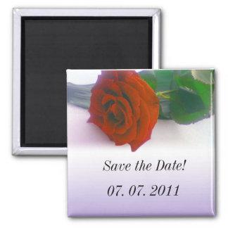 red rose on fading purple wedding invation refrigerator magnets