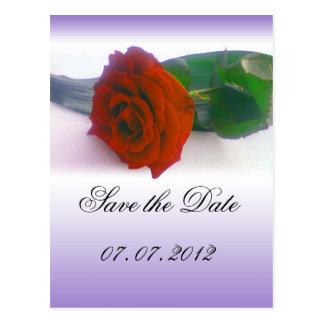 red rose on fading purple wedding invation postcard